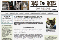 Rags to Riches Cat Rescue site